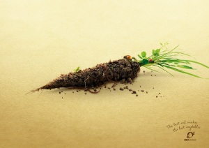 bio_suisse_earthy_veggies_carrot_aotw_aotw