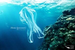 jean-michel-cousteaus-ocean-futures-brasil-help-them-go-extinct-print-375688-adeevee