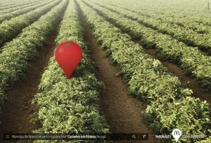 mcdonalds-tomato-onion-milk-lettuce-print-376332-adeevee