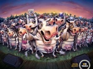 taura-cows-bulls-print-376558-adeevee