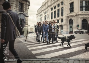 belgian-centre-for-guide-dogs-we-need-more-guide-dogs-print-377815-adeevee