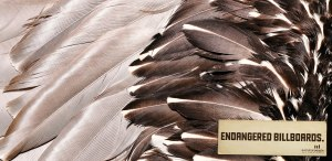 evolution-people-new-media-agency-endangered-billboards-outdoor-print-378510-adeevee