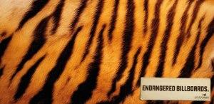 evolution-people-new-media-agency-endangered-billboards-outdoor-print-378513-adeevee