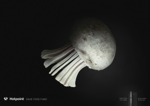 hotpoint-jellyfish-kiwi-bird-whale-print-377963-adeevee