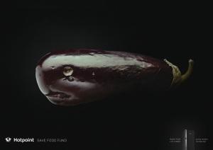 hotpoint-jellyfish-kiwi-bird-whale-print-377965-adeevee