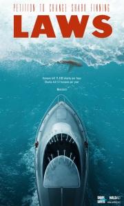 shark_finning_aotw