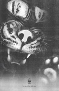 wwf-tiger-elephant-orangutan-print-378808-adeevee