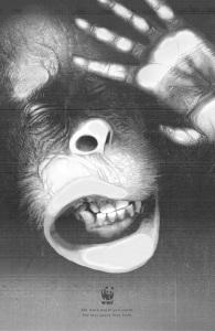 wwf-tiger-elephant-orangutan-print-378810-adeevee