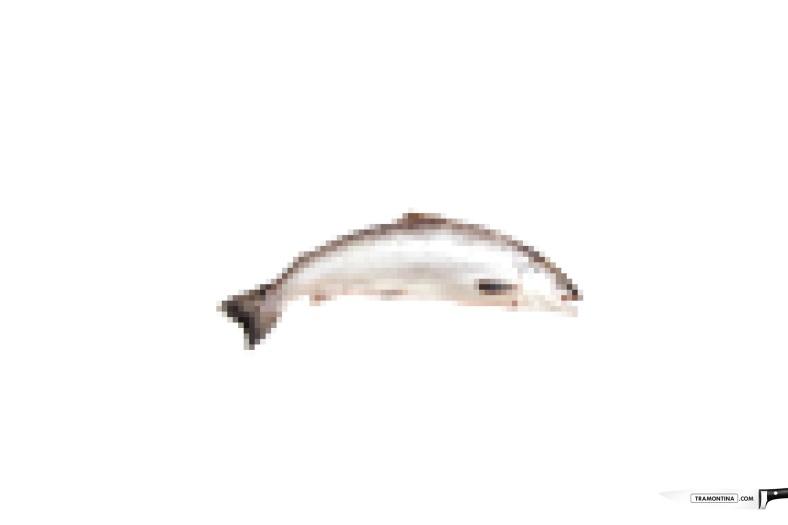 tramontinacom-tomato-fish-cheese-print-379861-adeevee