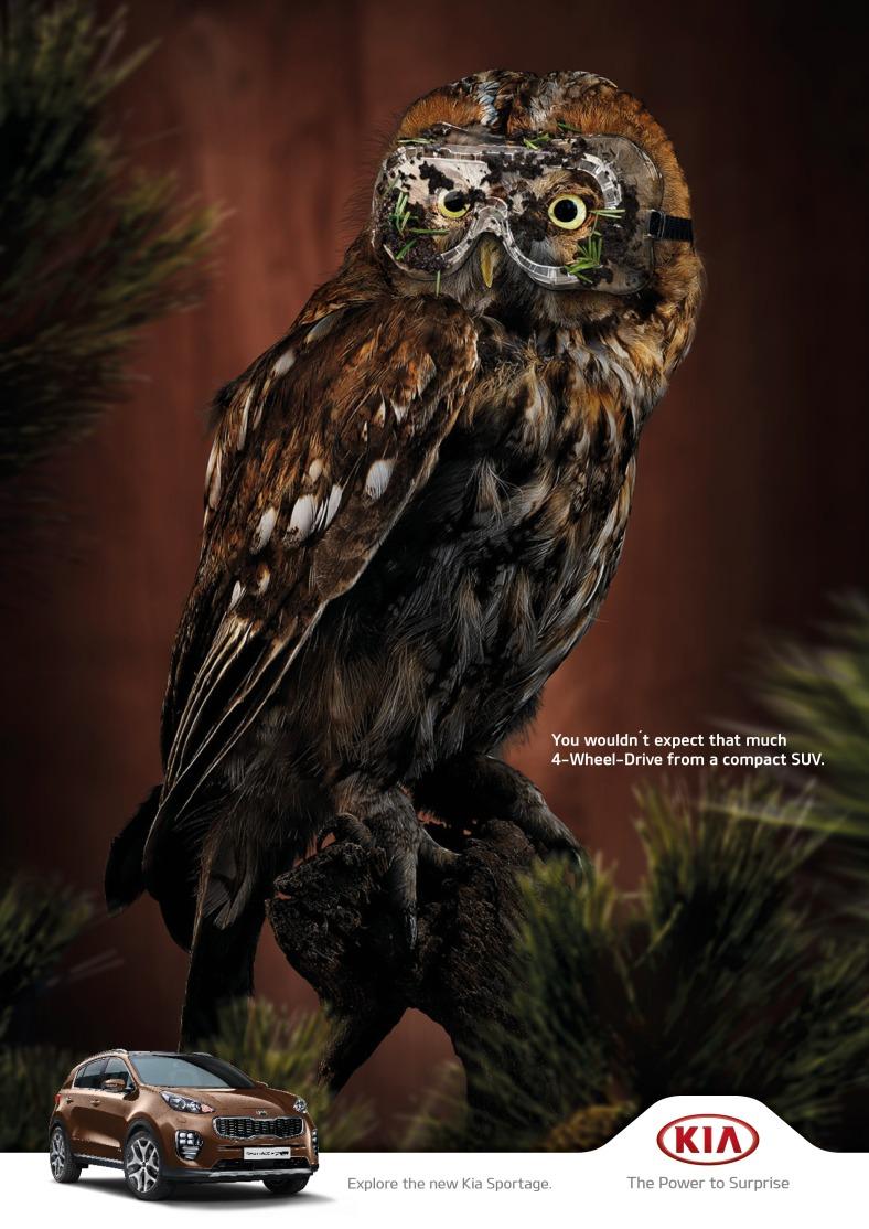 kia-owl-piglet-squirrel-rabbit-print-380986-adeevee