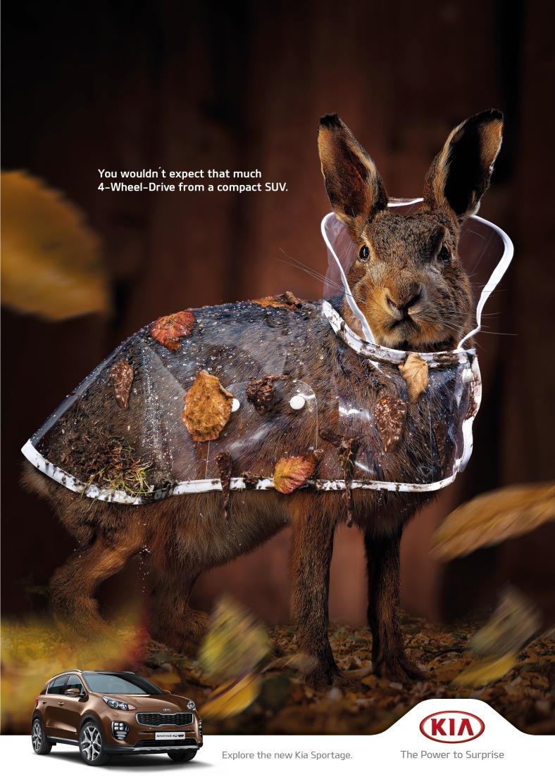 kia-owl-piglet-squirrel-rabbit-print-380989-adeevee